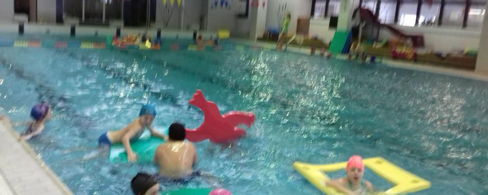 plavání1.jpg